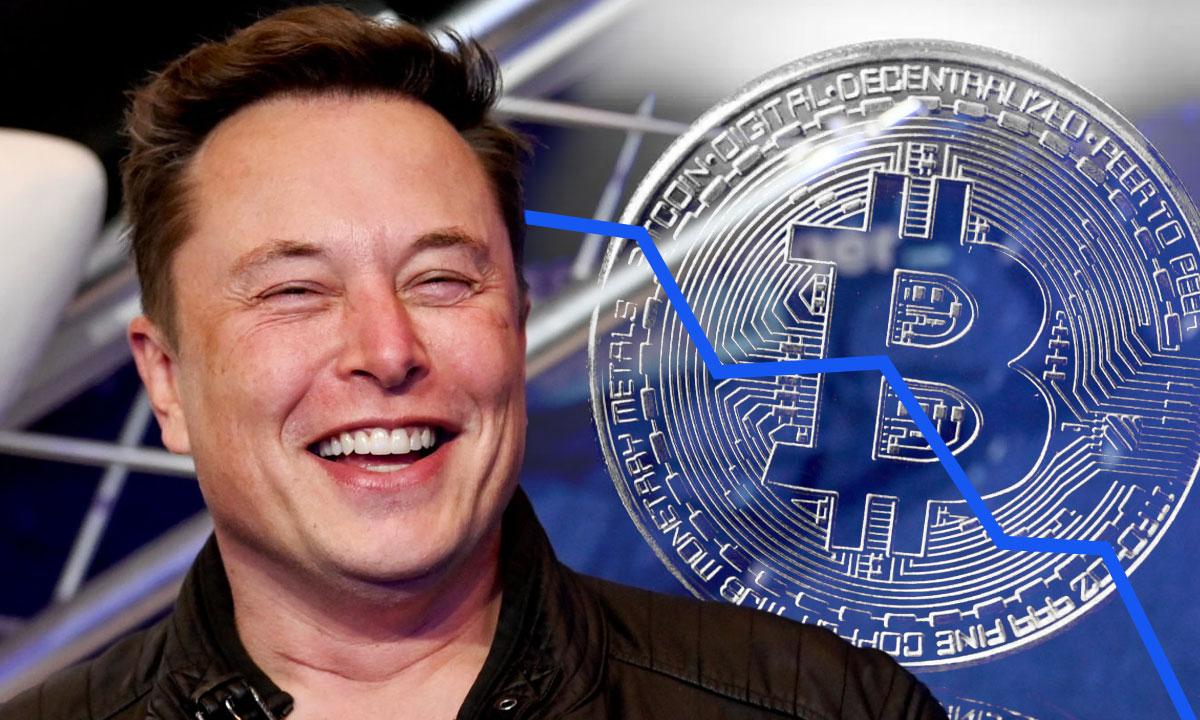 Elon Musk insinuó a través de Twitter posee alrededor de 42K en Bitcoin