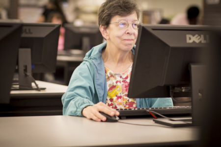 Adult Patron Using a Computer in the downstairs area