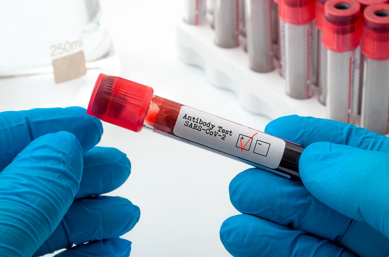 O Regn-CoV2 é feito com dois anticorpos sintéticos que aumentam a proteção do sistema imunológico (Fonte: iStock).