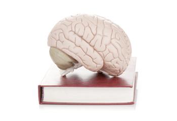 APA Books® E-Collections