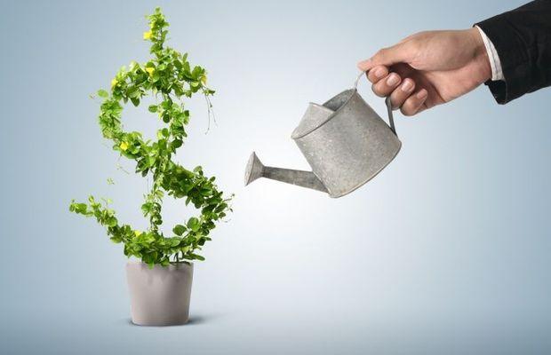 LMNP ancien : quelle rentabilité peut-on espérer pour ce type d'achat ?