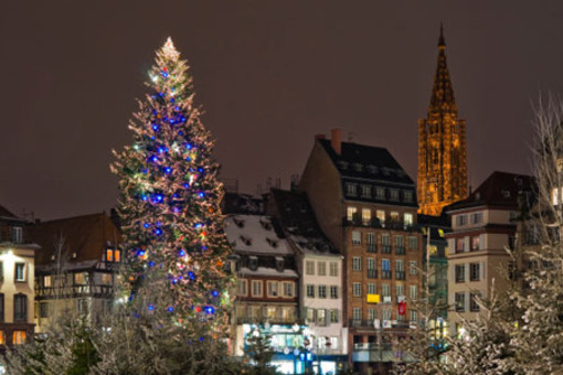 Achat residence senior proche Strasbourg