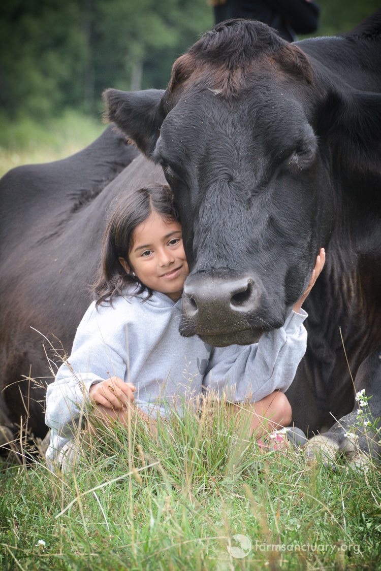 Merlin steer with young guest