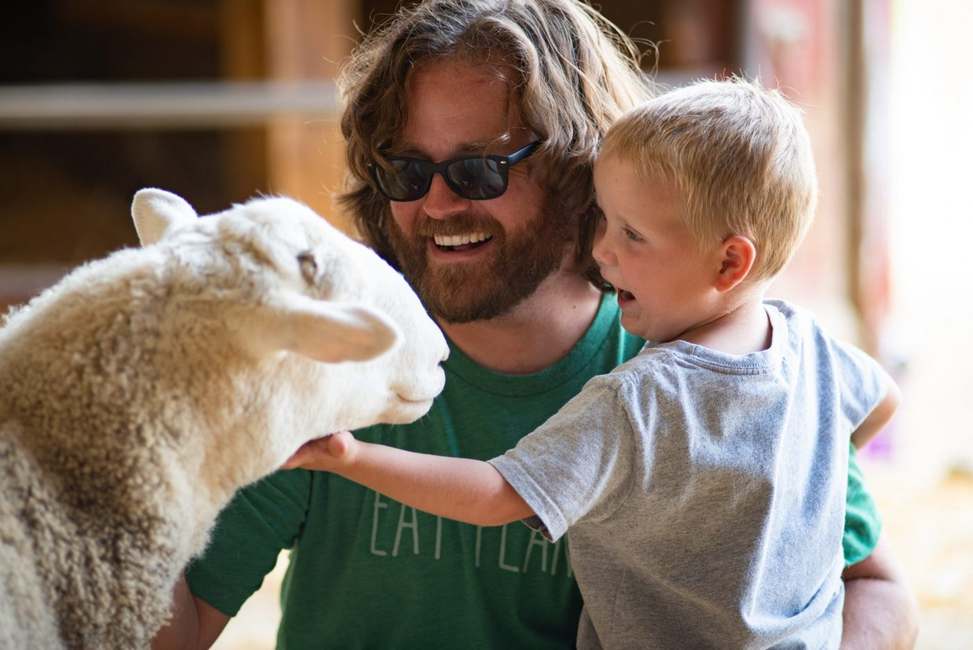 Father and son with Sheep