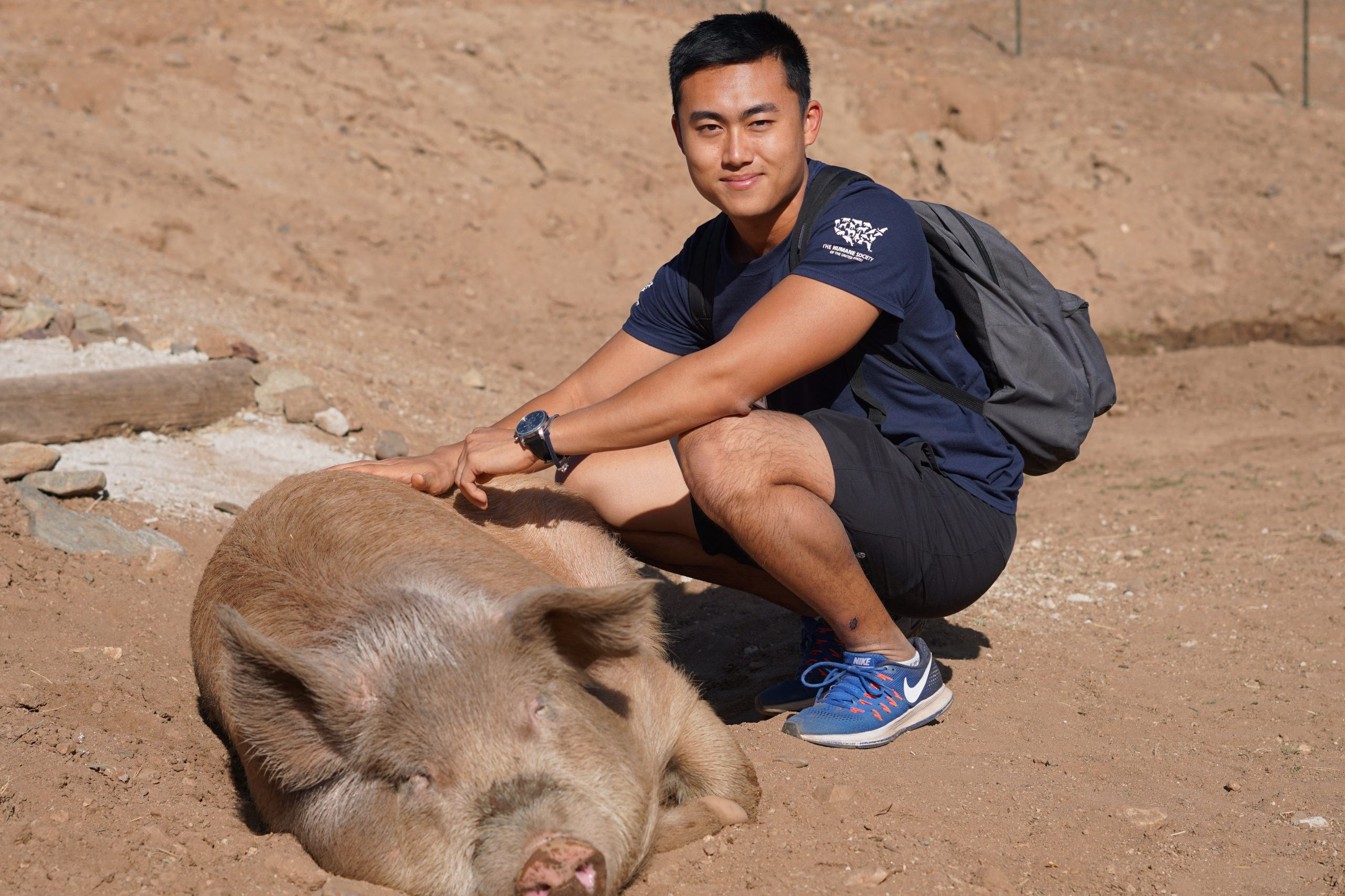 Vertical explainer photo 1 - Man pets pig at Farm Sanctuary