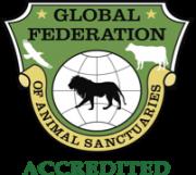 Global Federation Accredited
