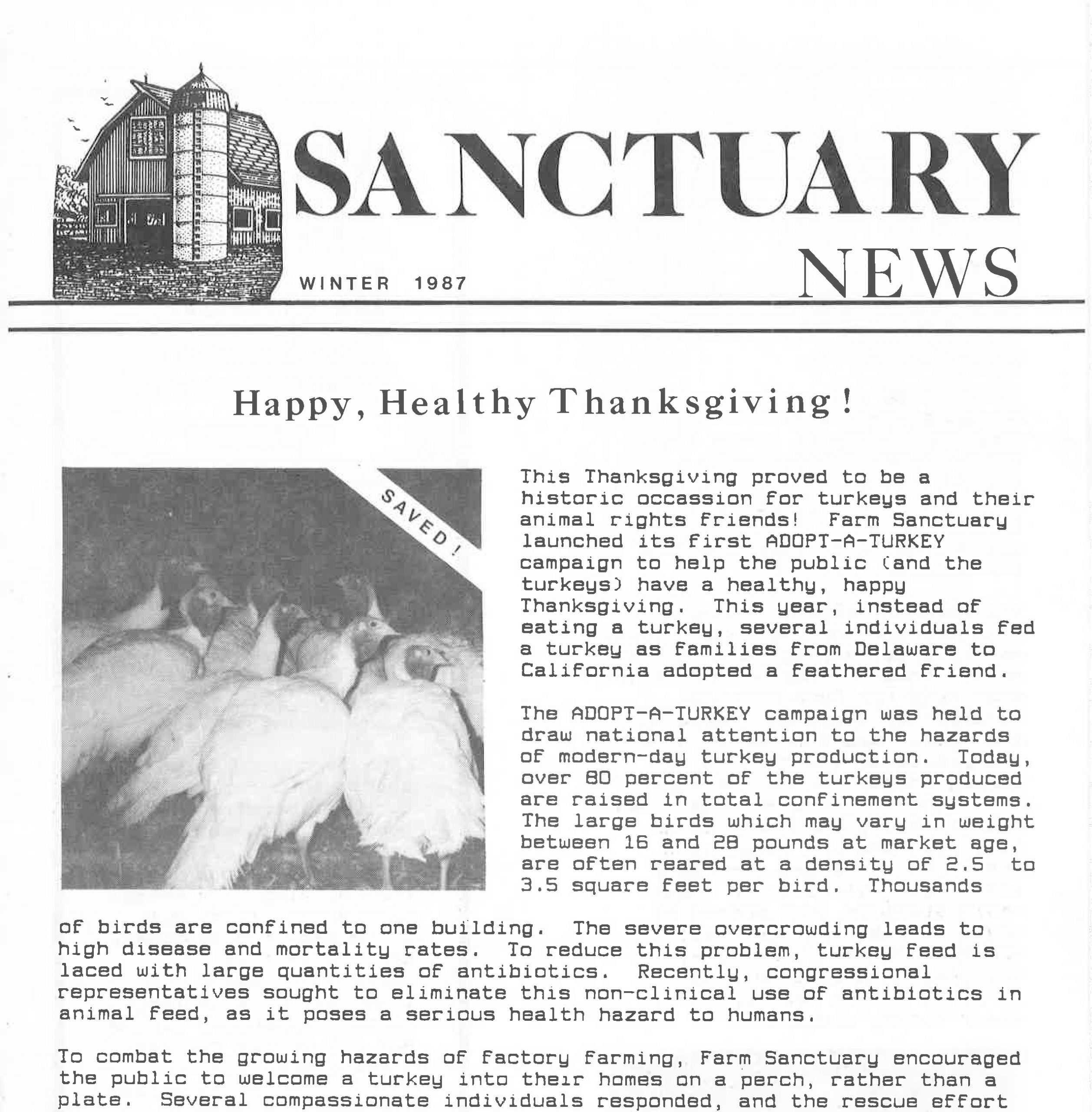 A clipping of the 1987 Winter issue of Sanctuary News featuring a story about the Adopt a Turkey program