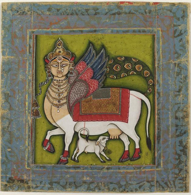 Kamadhenu the wish granting cow
