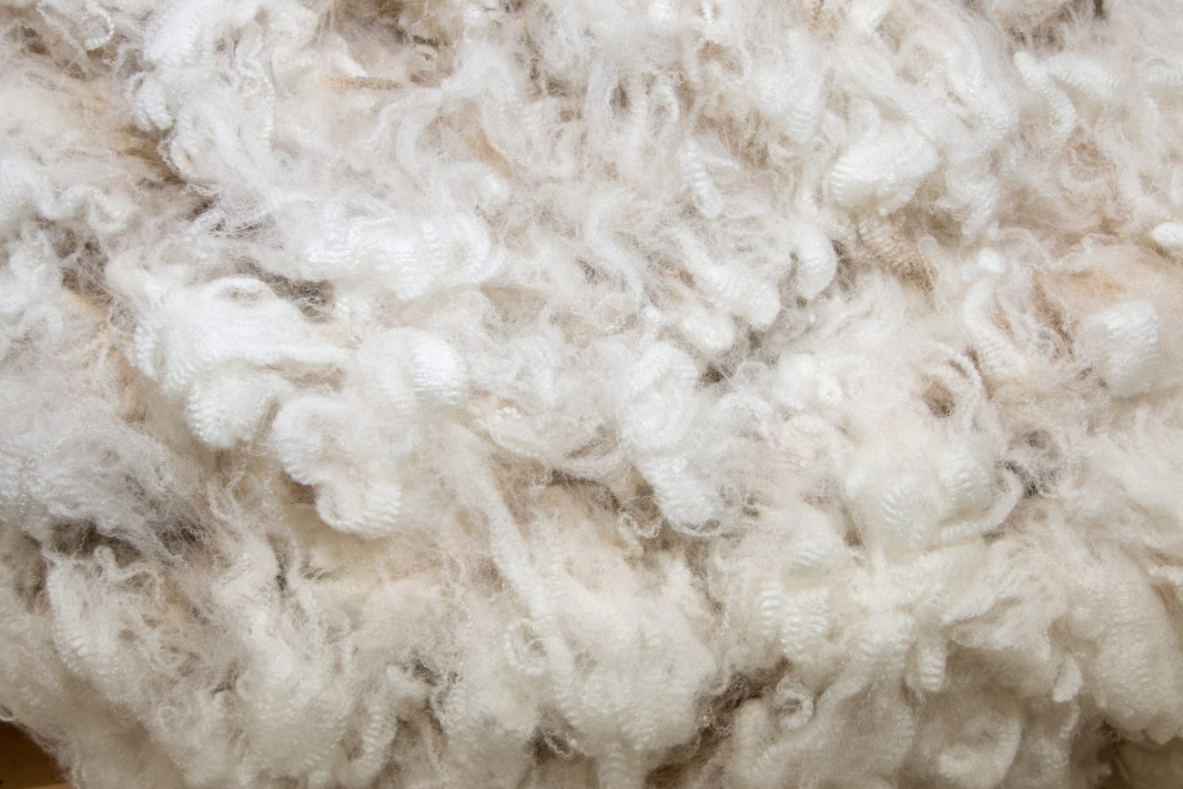 White Merino Wool