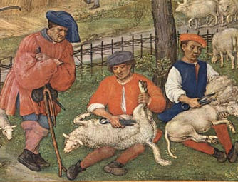 Sheep shearers, Flanders, from the Grimani Breviary c. 1510