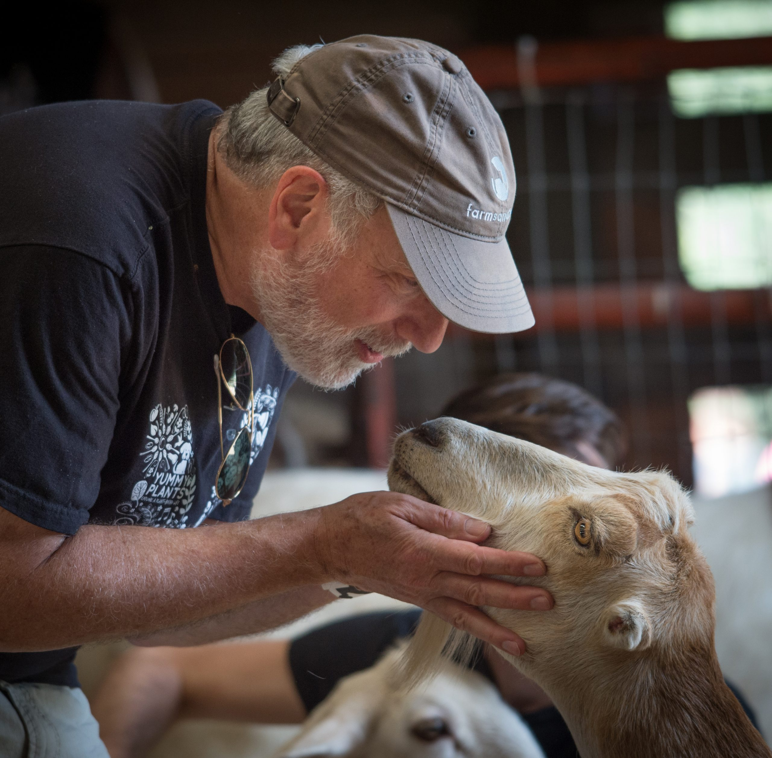 Guest with Cynthia goat at Farm Sanctuary