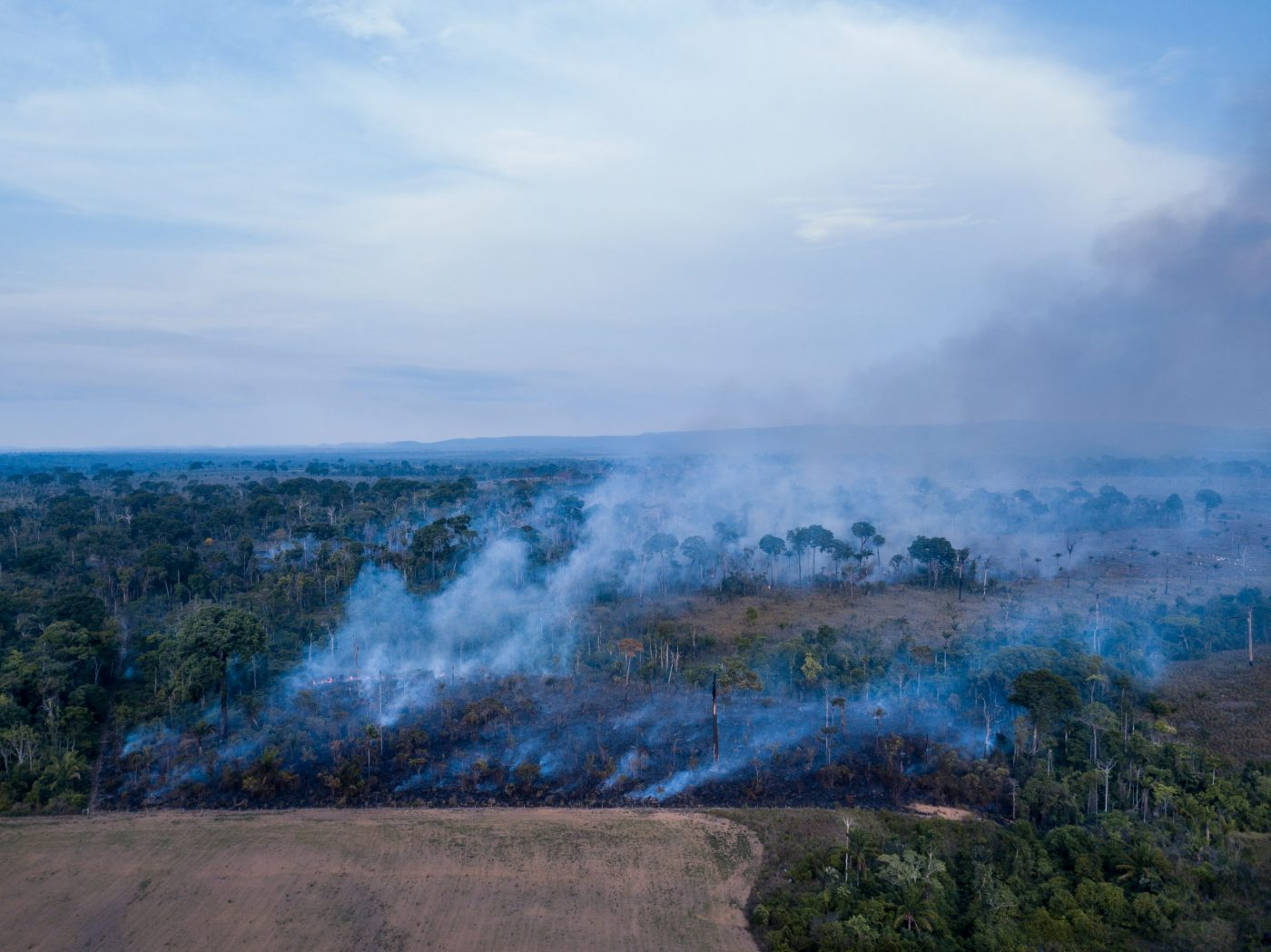 Burning of the Amazon rainforest at dusk to increase livestock grazing area and agriculture activities Area already deforested in the foreground.