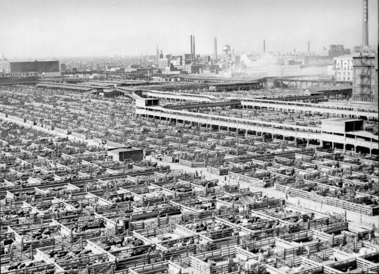 The maze of livestock pens and walkways at the Union Stock Yards, Chicago, Illinois, USA 1947