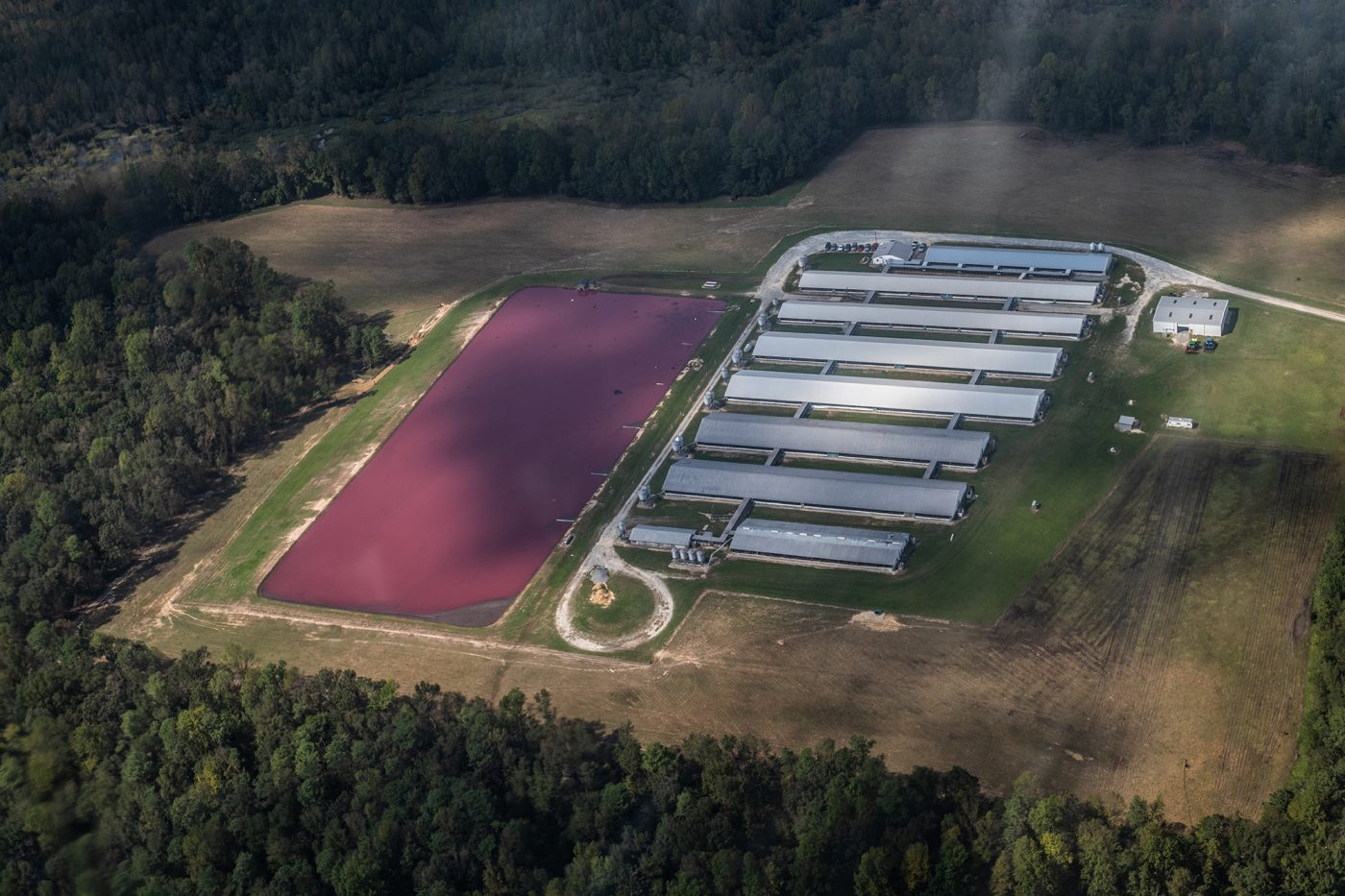 Aerial view of CAFO