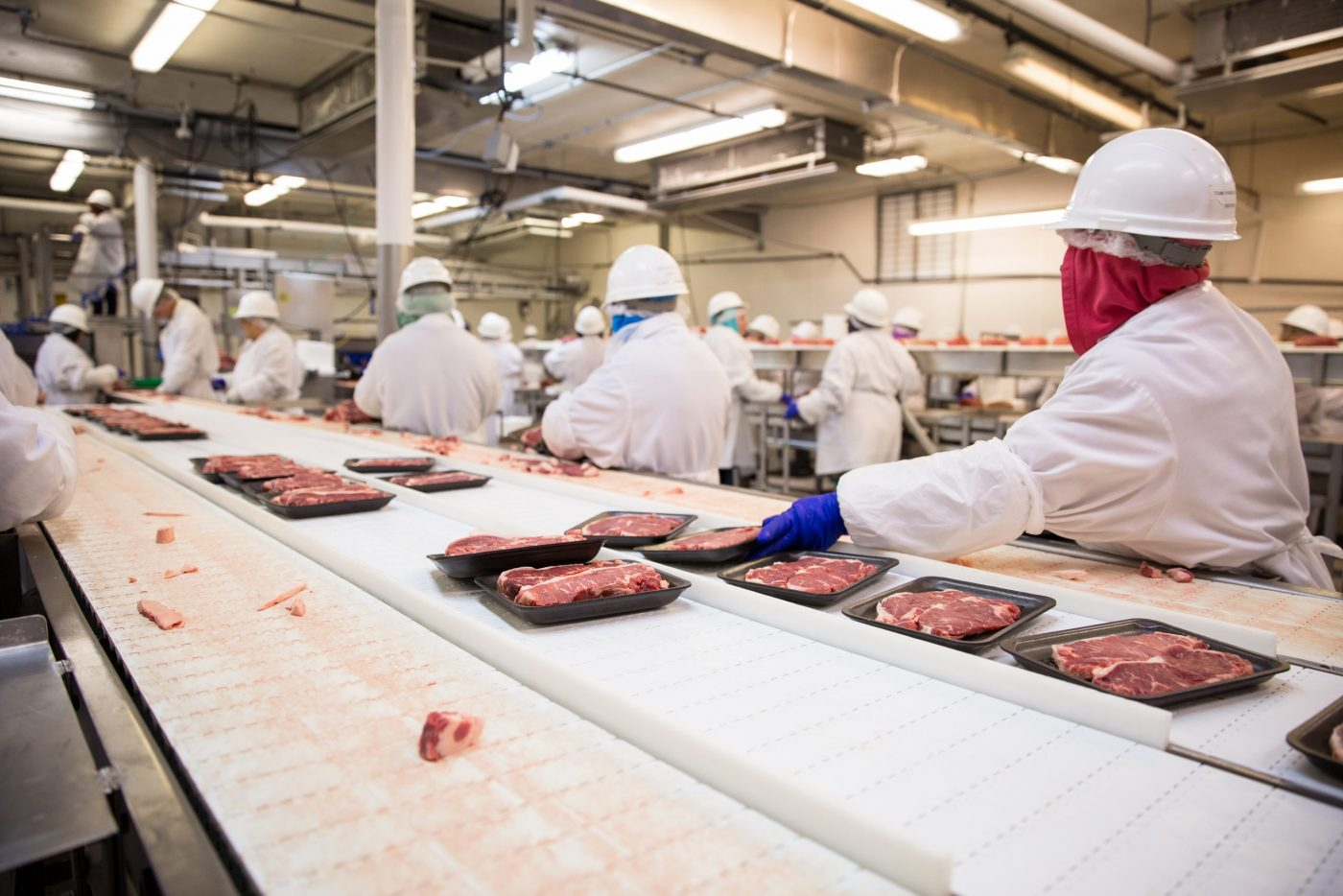 Workers handle meat organizing packing shipping loading at factory plant