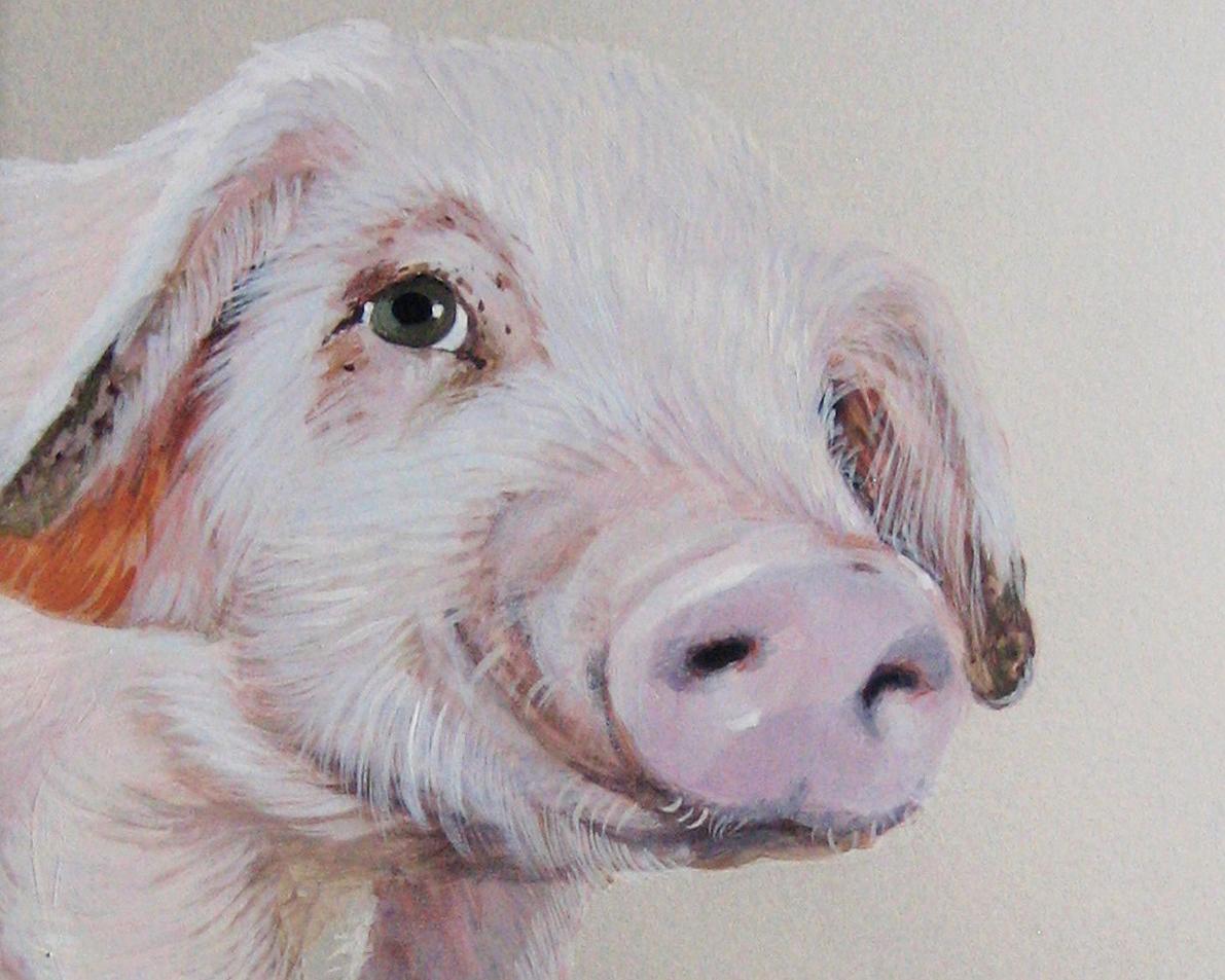 Vertical explainer photo 1 - Peeking Pig / Artist: Jane O'Hara