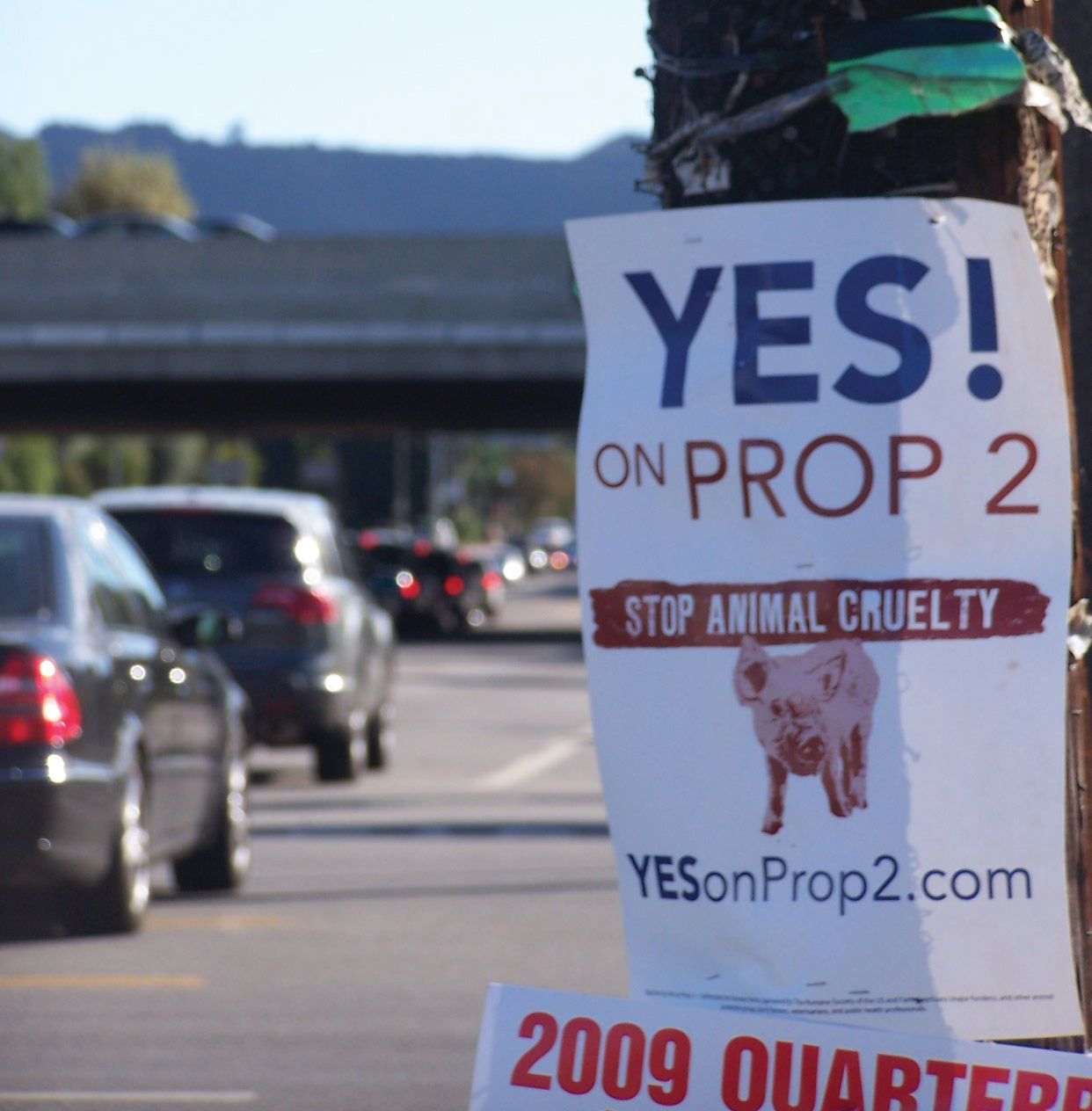 Yes on Prop 2 sign in California.
