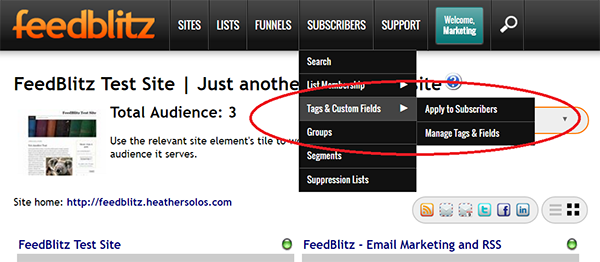Screenshot of FeedBlitz Publisher Dashboard showing Custom Fields and Tagging