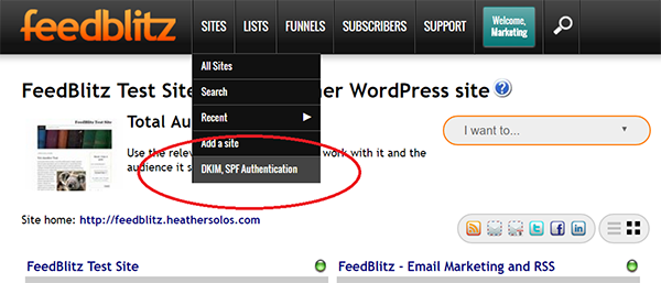 Screenshot of DKIM and SPF Authentication in FeedBlitz Publisher's Platform under Sites