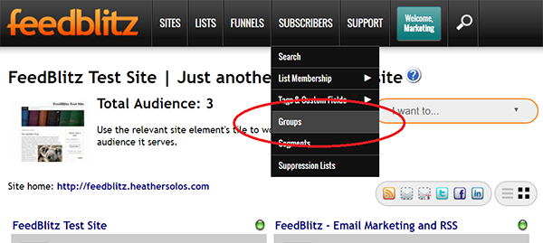 Screenshot of FeedBlitz Dashboard showing location of Groups