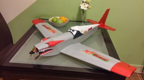 FT-Racer Ripslinger chase flights Image