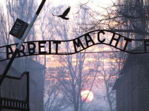 A traveling exhibit will bring Auschwitz artifacts to people around the world.