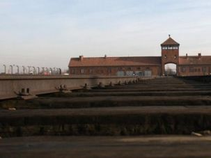 Deadly Destination: Train tracks run through the Birkenau death camp.