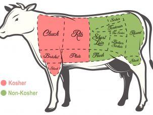 Kosher beef diagram.