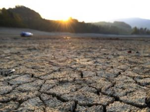 Parched Earth: The dried shores of Lake Gruyere in Switzerland, affected by continous drought.