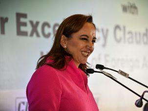 Claudia Ruiz Massieu in New Delhi on March 11, 2016.