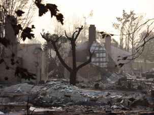 A neighborhood in Santa Rosa, California, after a major wildfire.