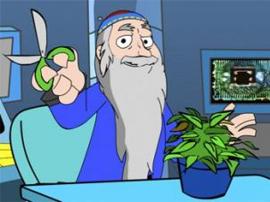 Kabbalistic Wisdom: A KabbalaToon explains that trimming a plant?s ?dead ends,? prevents it from wasting life.