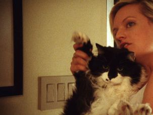 Year of the Cat: Elisabeth Moss and her scene partner are the main reasons for watching 'Listen Up Philip.'