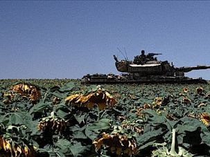 Tank and Sunflowers A moment of relief in the otherwise claustrophobic ?Lebanon.?