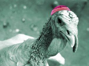 Louis, the Jewish Thanksgiving turkey, was pardoned.