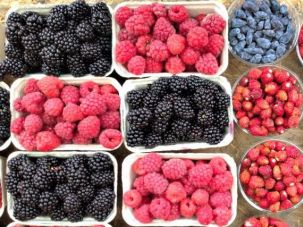 Summer berries at the farmer's market.