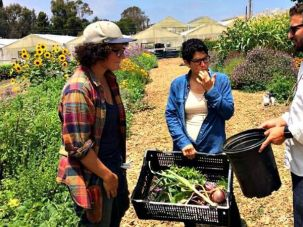 Gefilteria's Liz Alpern (center) at Coastal Roots Farm in San Diego, California.