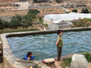 Unfit for Consumption: Palestinian children in the West Bank village of Wadi Fuki swim in water considered too polluted to drink.