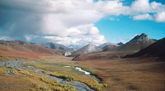 Edge of North America: The experience of bewilderment in the Arctic National Wildlife Refuge taught Niles Goldstein more than academic study.
