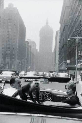 Park Avenue, New York, 1959