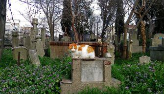A Dönme cemetery in Istanbul.