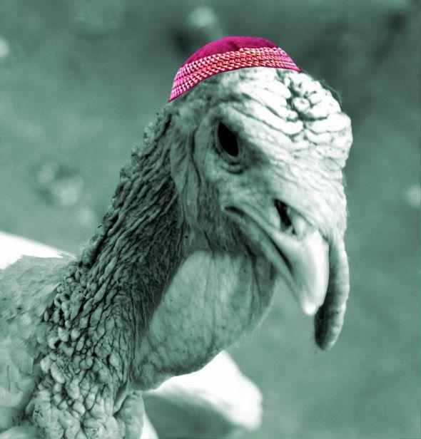 Jewish Thanksgiving Turkey