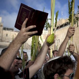My Myrtle: Shaking Lulavs at Sukkot.