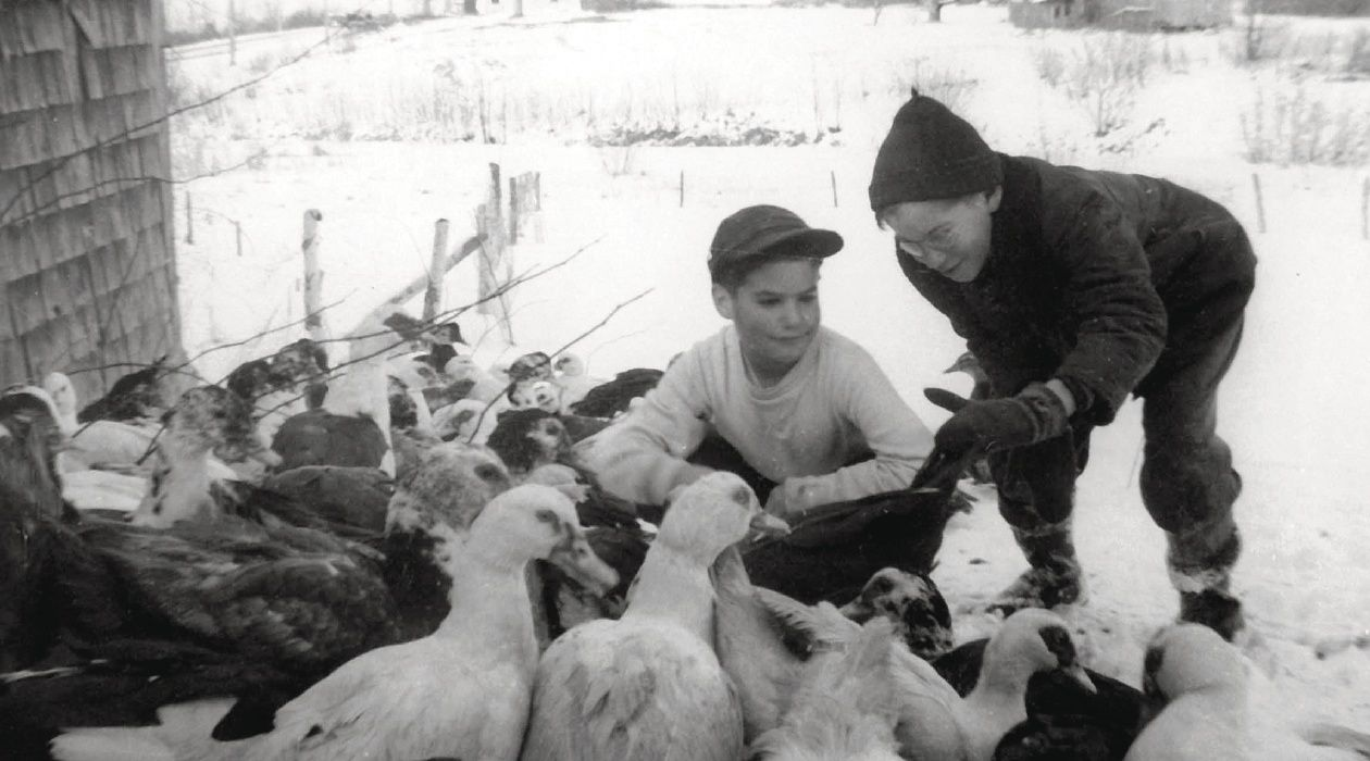 Feeding Time: Jeremy and Hugh Roth in Augusta in 1953.