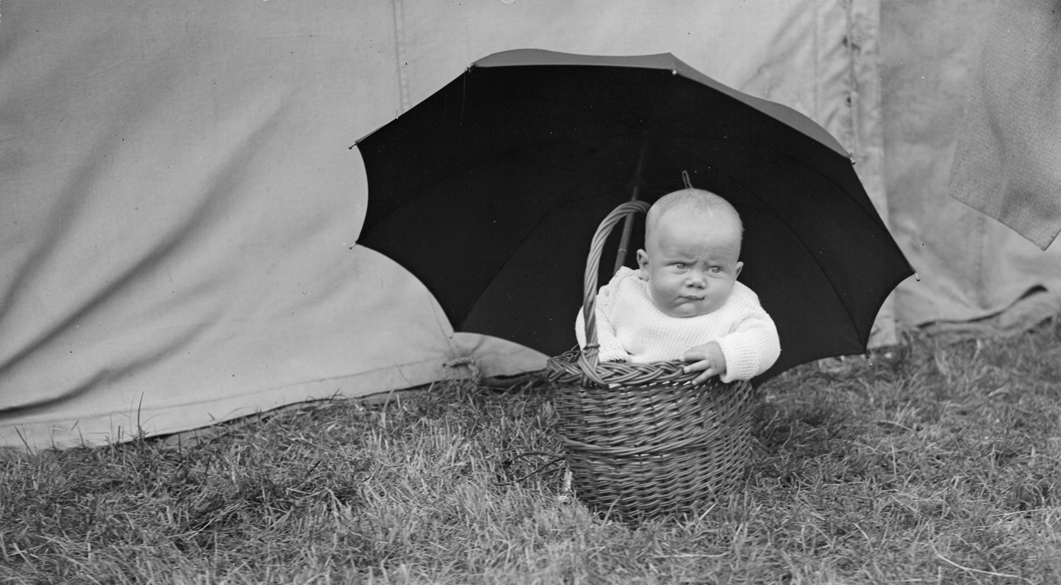 "Babies were too young to join the ""basket of deplorables."""