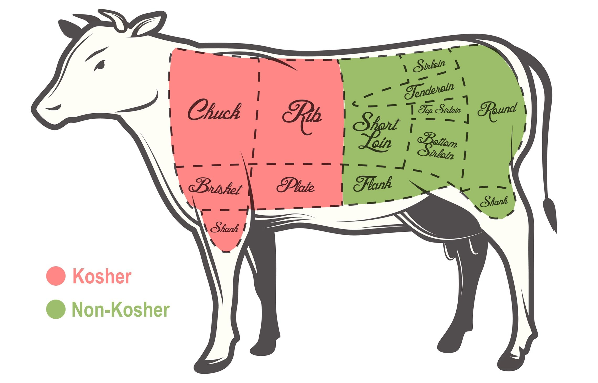 Kosher beef diagram.