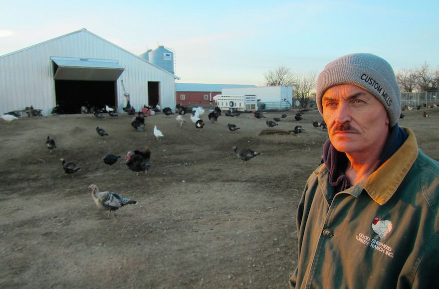 Frank Reese, owner of the Good Shepherd Poultry Ranch, only raises heritage birds.