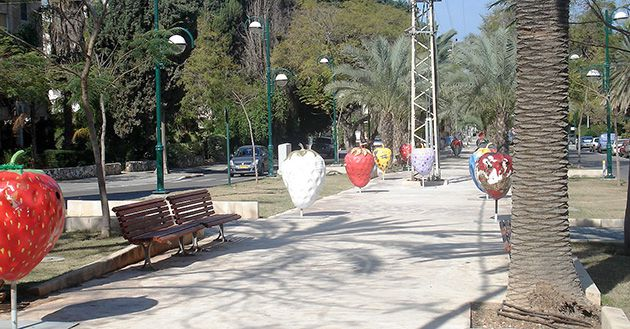 Local Funding: A tree-lined street in Ramat HaSharon, where Israel?s first American-style federation will launch on May 30.
