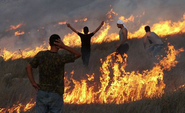 Their Livelihoods in Flames: Palestinian protesters stand amid blazes set by settlers to their olive groves last October near Yitzhar, a West Bank settlement known as a bastion for extremists.