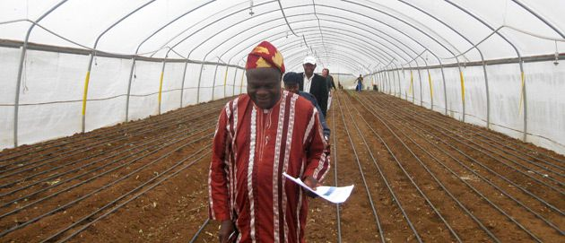 In Training: Participants in the NISPED program go on a field trip to a greenhouse in Israel.